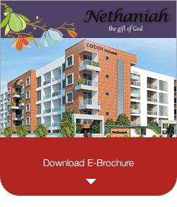 Download-Nethaniah_e-brochure-new